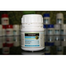 CiNNAPROT 100ML ECOPROTEC