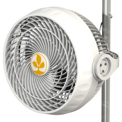 Monkey Fan oscillating 30W R1.00 Secret Jardin