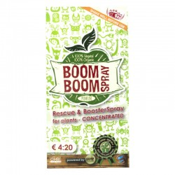 Boom Boom Spray 5 ml