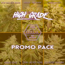 High Grade Regular Promo Pack