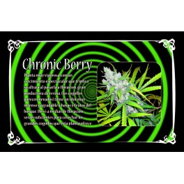 Chronic Berry, 2 unidades