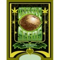 One Love Seeds